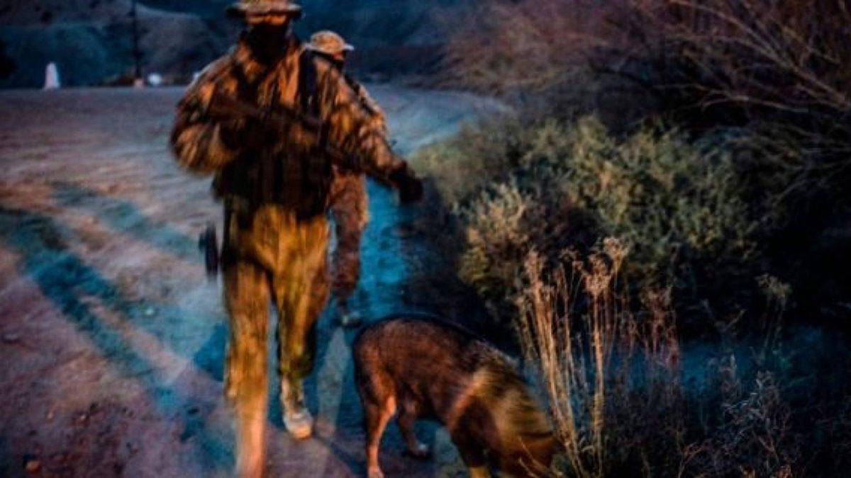 New Mexico militia detains migrants at gunpoint until Border Patrol arrives: report