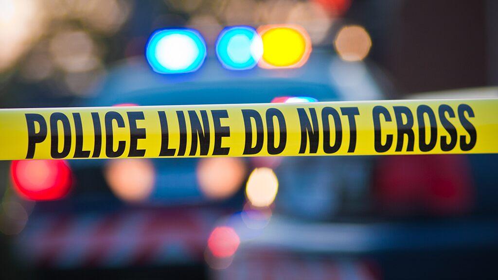 Machete-wielding 11-year-old foils North Carolina home invasion