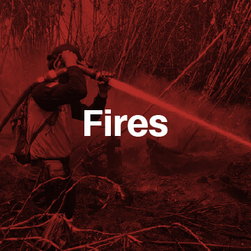 People are choking. Orangutans are dying. Yet this is no ordinary fire — it was lit for you.